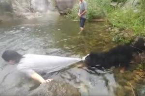 「危ないから川に入ったらダメ!!」川遊びをしようとする女性を必死になって阻止する様子がこちら。