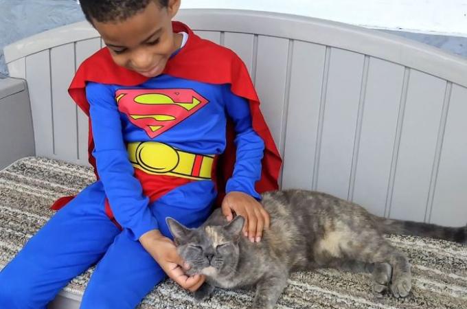 野良猫を救う「小さなスーパーヒーロー」。人に懐かない野良猫でも惹きつけてしまうヒーローに海外メディアが注目!