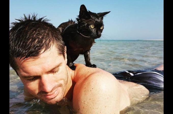 捨てられた過去を持つ黒猫。新しい家族との出会いによって、意外な趣味を持ち幸せな毎日を送る。