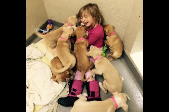 子犬まみれで笑顔を見せる少女がまさに天使!この「笑顔」に救われたの声が続出!!