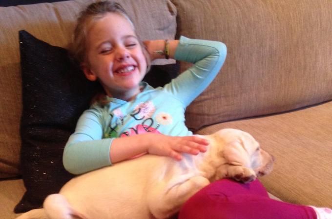 泥棒に入った家にいたラブラドール犬を盗んだ犯人。女の子が悲しんでいることを知って静かに返却する。