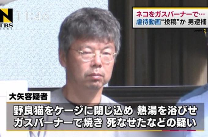 13匹の猫を虐待し動画をネットで配信した元税理士の男。懲役1年10月、執行猶予4年の有罪判決。