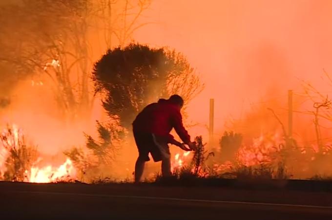 山火事の中、炎から逃げるウサギを発見した男性。車から飛び降り救出するも、世間からは批判殺到。