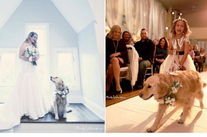 愛犬に結婚式に参列してもらい、幸せいっぱいの花嫁。「美しい写真」など多くの称賛の声が上がる。