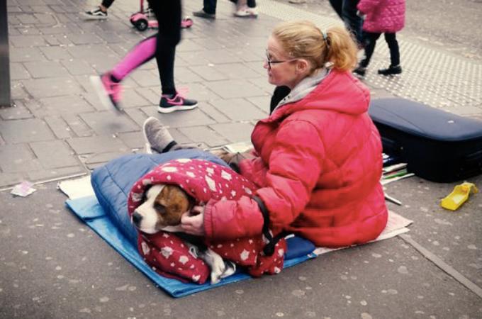 寒い中、外で暮らすホームレスたちの愛犬に防寒コートを!動物虐待防止協会がクリスマスギフトを贈り安心と笑顔を溢れる。