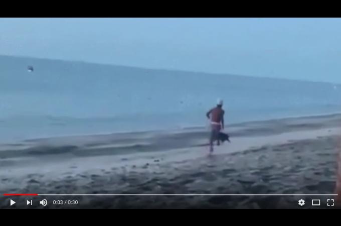 野良犬を走って蹴り上げようとした男に訪れた悲惨な末路とは。