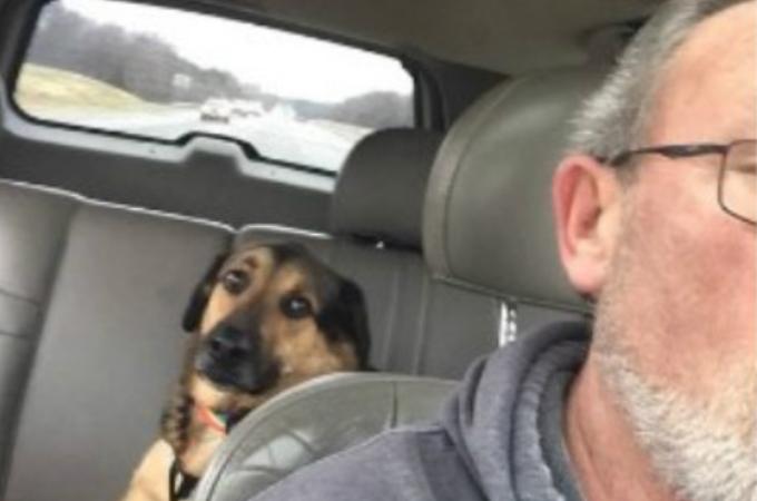 旅行のため息子のように可愛がっている愛犬を父に預けた女性。それから届く愛犬からのメールの内容とは。