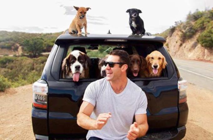 6匹の保護した犬と旅をする男性。そこに秘められた思いと、彼の夢とは。