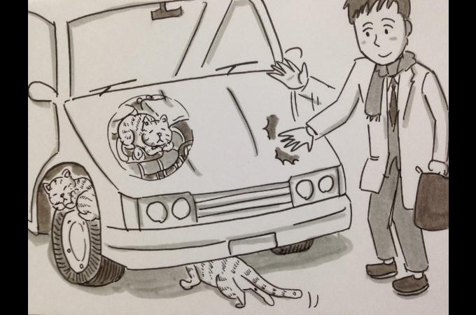 「さらに広まってくれるといいな」そんな願いを込めて鉄拳さんが「猫バンバン」をイラスト付きでツイート!