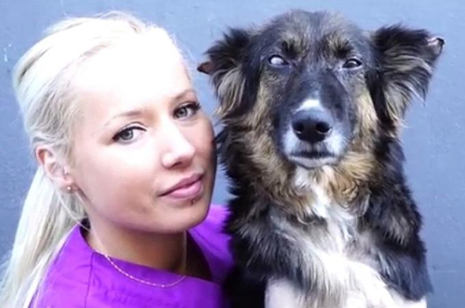失明・骨折・流産と様々な苦難を乗り越え、少しずつ回復に向かう保護犬。その姿に胸が熱くなる。