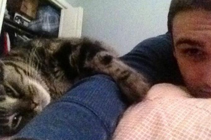 猫白血病で余命3年と言われた元野良猫。最期まで愛情を注ごうと決意した家族に引き取られ13年生きる。