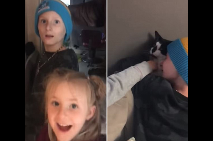 死亡認定され、死んだと思っていた猫が帰宅し家族を驚かせる。