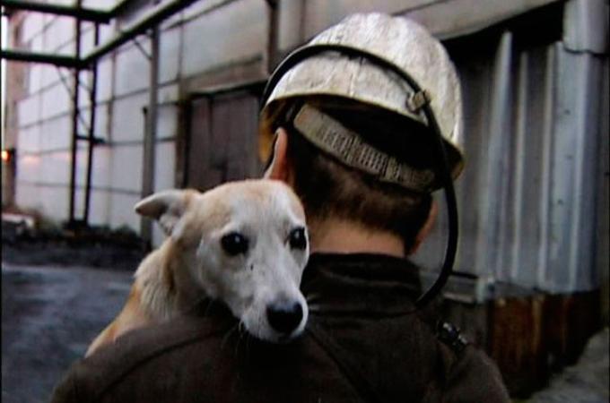 鉱山で働いた仲間として犬の鉱夫の石碑が作られる。