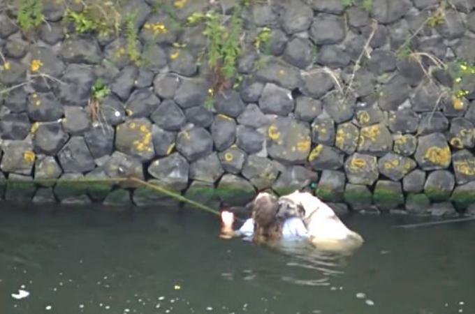陸に上がれず溺れかけていた犬を発見した女性。さらに助けが増え、犬も含めて全員無事に助け出される。