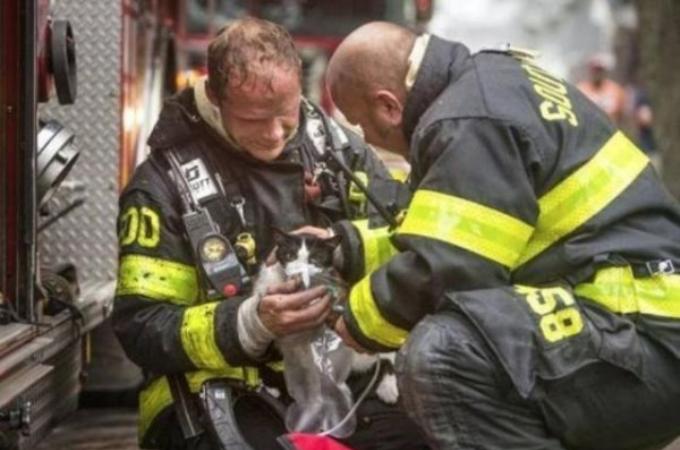 危険と隣り合わせでも、小さな命を見捨てることなく救助にあたる消防士たちの勇姿15枚。