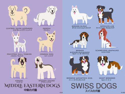 犬の原産地が一目で分かる犬種別イラスト21選