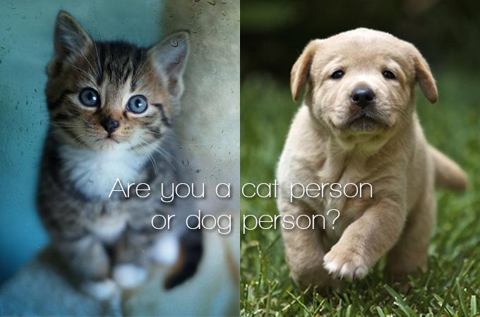 あなたは猫好き?それとも犬好き?好みのペットでわかる性格の違いに驚きの結果が