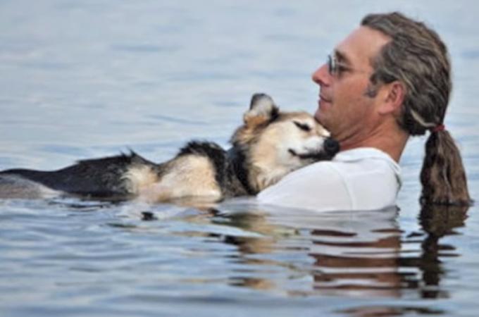 人間と犬の間に友情は確かに存在する!ある男性と老犬の友情の感動ストーリー