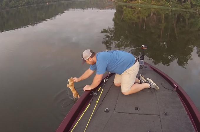 魚釣りに出かけた2人の男性が釣り上げたのは棄てられた子猫たち
