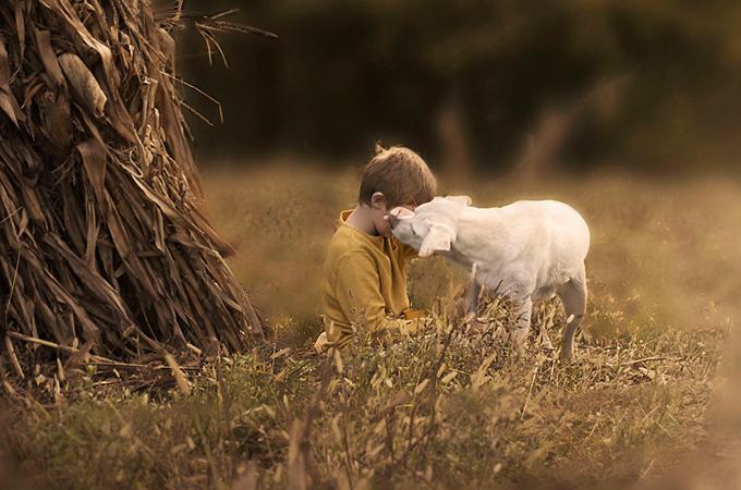 誰にも引き離すことは出来ない!男の子と犬たちの固く結ばれた絆