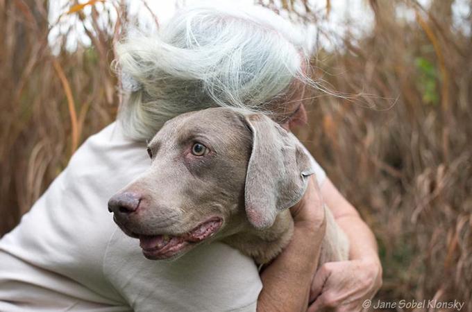 犬と人との間に生まれる無条件の愛の絆の写真が美しいと話題に