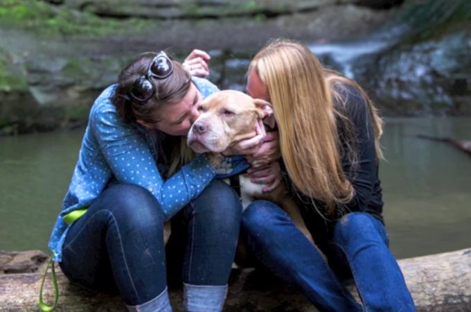 余命数ヶ月の保護犬を里親に迎え入れ、愛情の限りを尽くす2人の女性