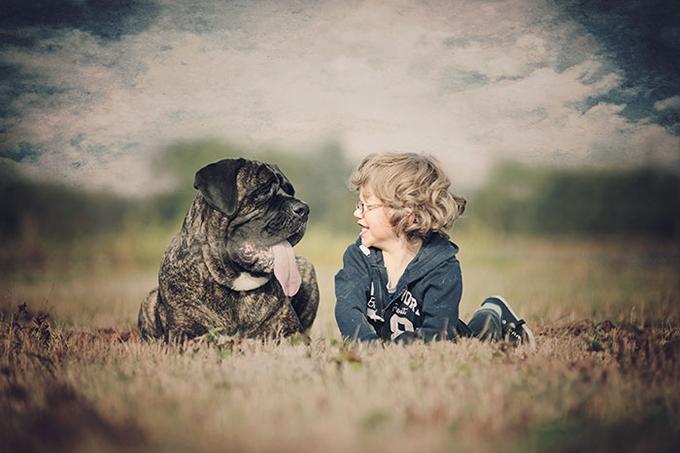 少年と保護犬の物語が写し出された画像が素敵すぎると話題に
