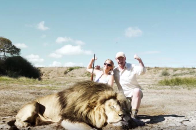 野生のライオンを殺し記念撮影する女性。その後、女性に起きた罰とは