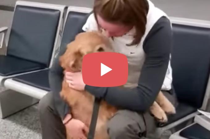 【動画】長い間離れ離れに生活していたワンコと女性の空港での再会。