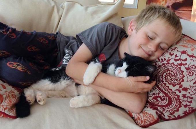 20歳の老猫を迎え入れた家族。人懐っこいその性格に家族みんなが笑顔に