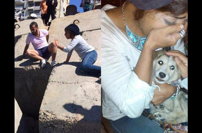 大きな岩の下に閉じ込められた犬の命を救うため多くの人々が立ち上がる