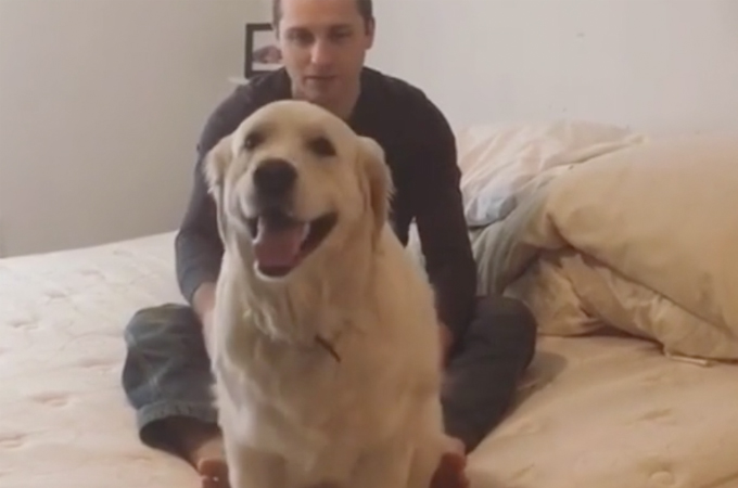 【動画】愛犬を呼ぶ飼い主さん。愛犬が振り向く代わりにとった行動とは?