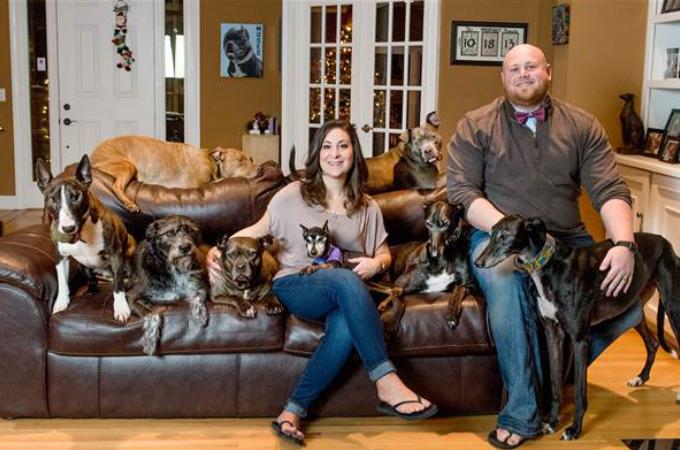 8匹の犬たちと暮らす夫妻が、家族全員で寝るために考えたアイディアとは