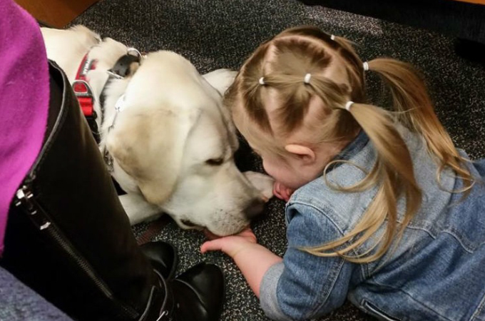 8キロ離れた場所から少女の異変を感知した糖尿アラート犬。