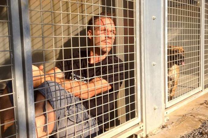 シェルターで過ごす動物たちに里親が見つかるまで自らケージで暮らす男性。多くの注目を集め多くの動物たちを救う