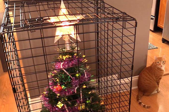 ペットにイタズラされないためのクリスマスツリーの飾り場所が斬新すぎると話題に