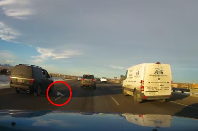 犬を車に乗せ窓を全開にし走行するのは危険!高速道路で危機一髪の様子を車載カメラが撮影