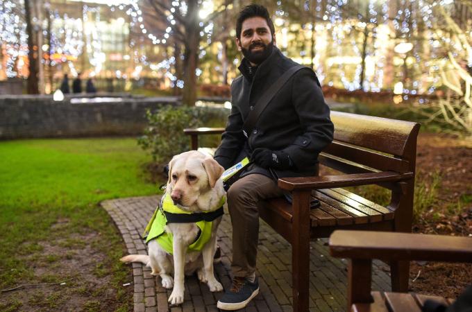 盲導犬に小型カメラを設置。そこに映し出されたのは人々から暴力を受け、耐える盲導犬の姿