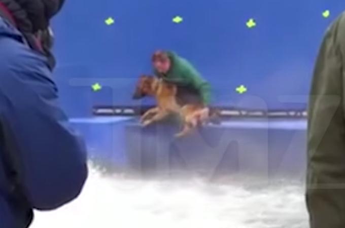 映画撮影現場で嫌がるジャーマン・シェパードを無理矢理流れの激しいプールに落とす映像が公開される