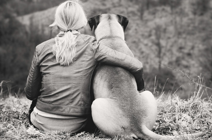 愛犬がガンに侵され、余命わずかと知らされた飼い主。写真家である姉に依頼し思い出の写真を撮る。