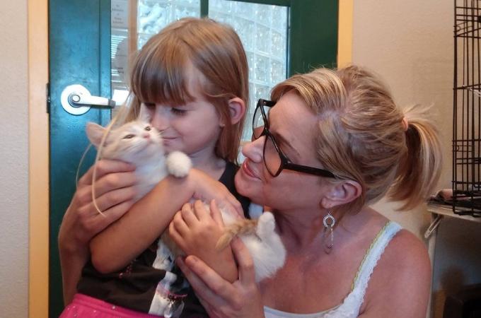 双子の猫のうち1匹を引き取った母と娘の親子。数年後、出会った男性の家で目を疑う光景を目の当たりにする