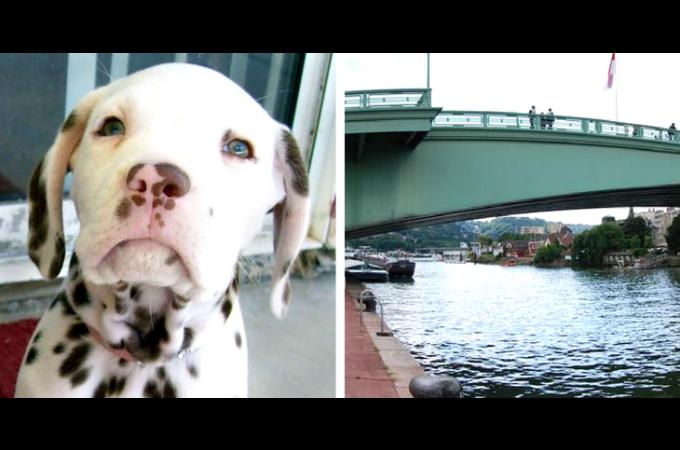 酔って橋から7mも下の川に突き落とした男が逮捕。そして、執行猶予となった男がその後、また酷い行動を起こす。