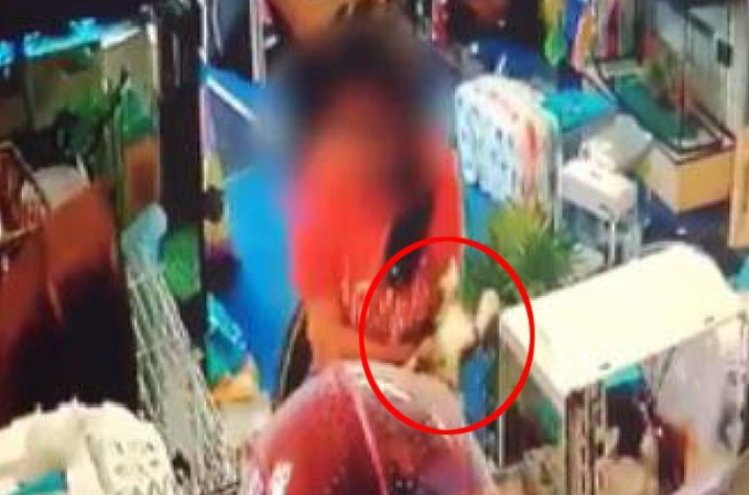 ペットショップで子猫を鷲掴みにし、そのまま無理矢理ハンドバッグに詰め込みその場を去った女。その後の行方とは。