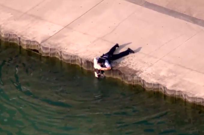 暑い日に喉が渇き、水を飲もうとした犬が誤って落ちてしまうが、そこに偶然居合わせた警察官がすぐに救出!