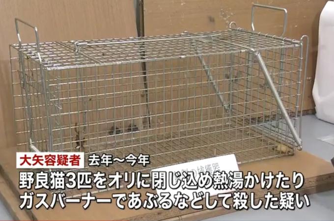 オリに閉じ込めた猫に熱湯をかけたりガスバーナーであぶるなどして殺した男が逮捕。これまでに13匹の猫を殺し動画をネットに流す。