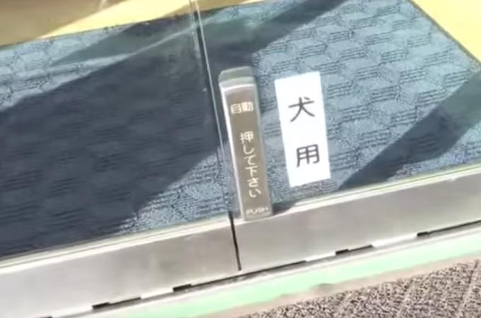 自動ドアの足元に設置されたボタン。その不思議なボタンを使用する様子がこちら!