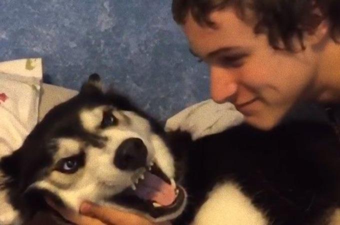 大好きな愛犬にキスをせがむ飼い主さん。しかし、それを拒む愛犬が見せた凶悪な表情とは。