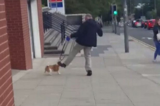 散歩中、飼い犬に虐待する男。辺りに血は飛び散り、残酷な様子を目にした男性が飼い主に犬を手放すよう抗議する。