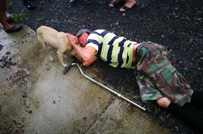 飼い主が倒れ動けなくなっているのを知らせた犬。その後、救急車に乗り込み飼い主を励まし続ける。