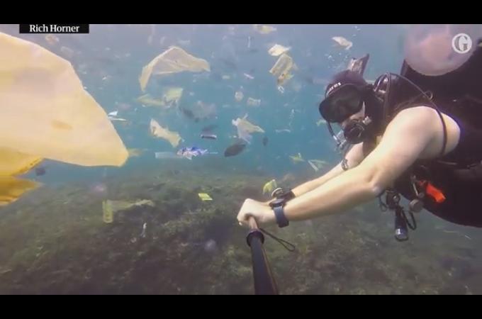バリ島の海の現状を撮影したダイバー。美しかった海の、その荒れた様子に胸が傷む。